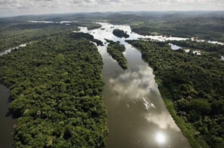 amazonia1.jpg