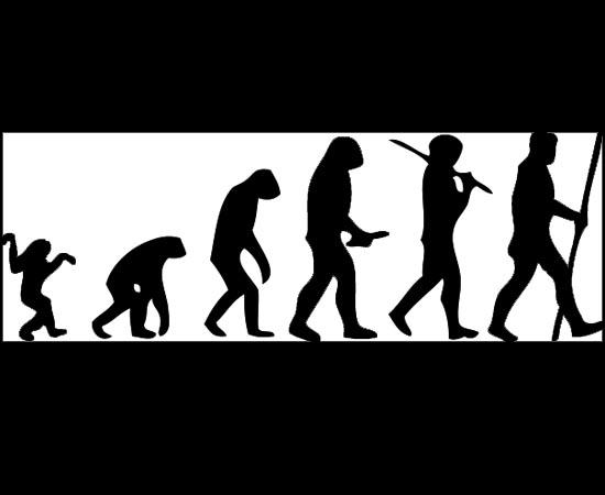 ÁRVORE DA VIDA - Estude sobre os diferentes ramos da evolução, cordados, vertebrados e invertebrados.
