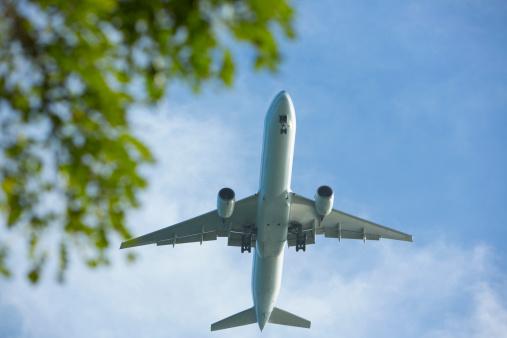 O profissional pode atuar na coordenação e supervisão de serviços de transporte aéreo, marítimos, ferroviário e rodoviário.