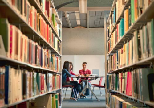 biblioteca-prateleiras-estudo.jpg