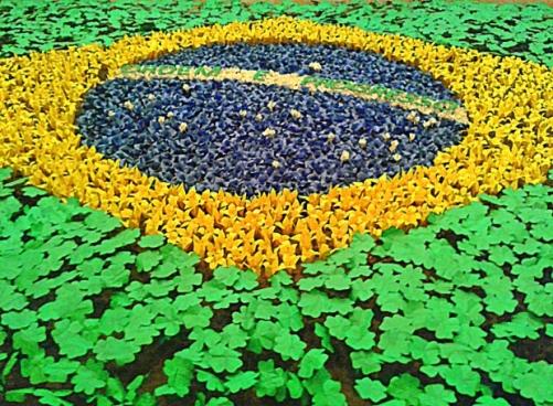 No Brasil, há três formas principais de conseguir uma bolsa: a Coordenação de Aperfeiçoamento de Pessoal de Nível Superior (CAPES), o Conselho Nacional de Desenvolvimento Científico e Tecnológico (CNPq) e o programa Ciência Sem Fronteiras. (Imagem: Morgue File)