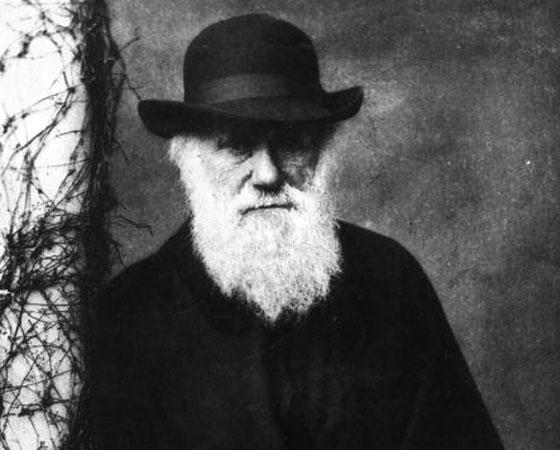 É por parte de avô ou avó que você descende do macaco?, perguntou o bispo Samuel Wilberforce  em um debate contra a teoria da evolução para uma plateia lotada no museu da Universidade de Oxford. Era o dia 30 de junho de 1860. Charles Darwin (foto), que nunca falou publicamente sobre a sua descoberta, havia comentado que gostaria tanto de estar morto quanto de responder ao bispo numa assembleia.