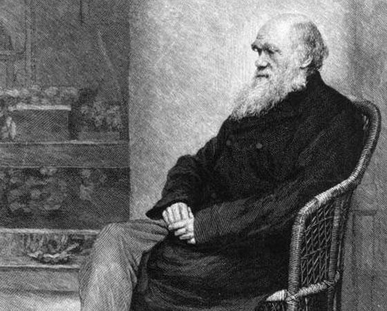 A defesa do evolucionismo no debate de Oxford coube ao amigo Thomas Huxley, que disse: O que eu preferiria como avô? Um homem altamente dotado pela natureza, mas que utiliza suas faculdades com o mero propósito de introduzir o ridículo numa discussão científica, ou um miserável macaco? Sem hesitar, escolho o macaco. Discussões como essa despertaram o interesse público sobre a ciência.