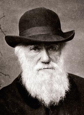 Embora a ideia de que os seres vivos evoluíam já existisse, foi Charles Darwin que deu o pulo do gato ao incluir a seleção natural no processo.