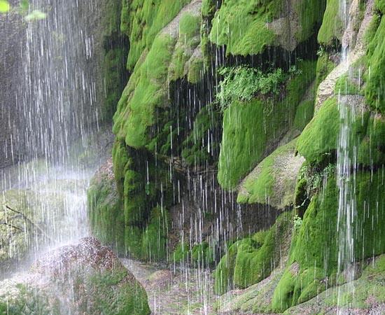 CICLOS BIOQUÍMICOS - Estude sobre o ciclo do carbono e do oxigênio, ciclo da água e ciclo do nitrogênio.