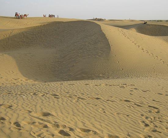 DESERTO - Estude sobre as características da vegetação.