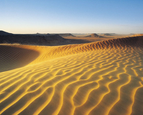 <strong>Deserto -</strong>Esse tipo de formação vegetal é caracterizada pelo solo pedregoso, repleto de dunas. Nos desertos, a vegetação é esparsa e de poucas espécies. Como as regiões áridas têm índices pluviométricos abaixo dos 250 milímetros ao ano, as plantas são adaptadas à ausência de chuvas (os cactos, por exemplo, armazenam água). Nos desertos frios (em altas latitudes, como o da Patagôna, no sul da Am. do Sul), as temperaturas variam pouco durante o dia. Já os desertos quentes (como o do Atacama, no Chile, da Austrália e do Saara) ficam em regiões tropicais e, no decorrer do dia, apresentam grande variação de temperatura.