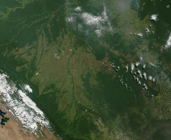 DESMATAMENTO - Estude sobre os biomas ameaçados, a desertificação e a erosão.