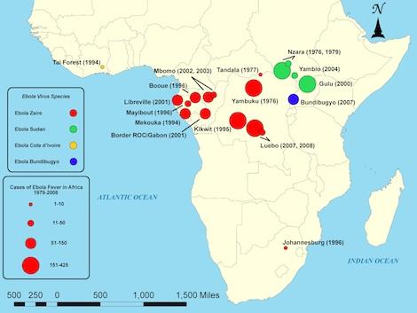 Com a propagação de uma perigosa epidemia na África, as chances da Ebola ser abordada em provas é muito grande. Essa febre emorrágica é a doença mais letal do mundo, matando cerca de 90% dos infectados. O contágio se dá através do contato com pessoas infectadas, estajam elas vivas ou mortas. Os sintomas são edemas, febre alta, sucessivas hemorragias, vômito, dor de cabeça e insuficiência hepática e renal. (Foto: Creative Commons)