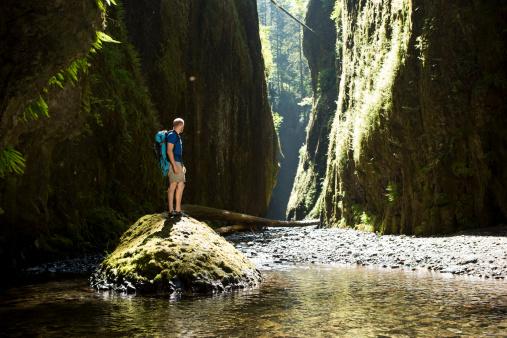 Organizar roteiros de ecoturismo a atuar como guia é outra possibilidade para o profissional de Turismo.