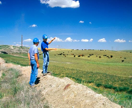 Engenharia Agrícola - São as técnicas e os conhecimentos empregados no gerenciamento de processos agropecuários.