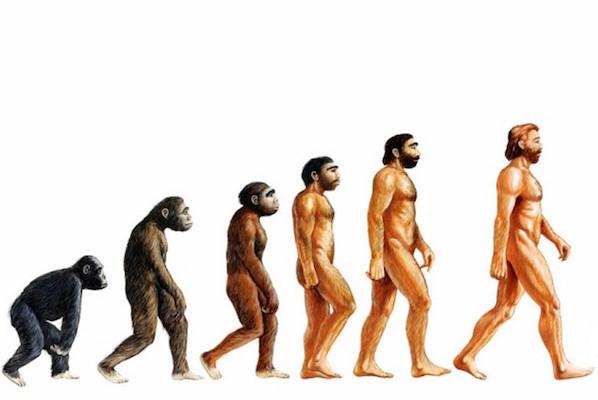 A evolução é a mudança que ocorre com características hereditárias de uma determinada população através das gerações. Depois de um longo período, esse processo faz com que as espécies mudem ou deem origem a novas espécies.