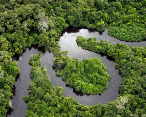 Fica nas proximidades da linha do Equador, abarcando o Amazonas, norte de Mato Grosso e oeste do Maranhão. Chove durante o ano todo, e em grande quantidade; é bastante úmido e a temperatura varia pouco no decorrer do ano, com média de 26ºC (foto Getty Images)