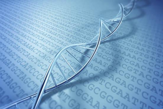 Além de carregar as informações genéticas, o DNA é capaz de sofrer mutações, o que leva a uma troca dinâmica dessas informações ao longo do tempo. Ainda, as informações genéticas do DNA servem para que as células fabriquem proteínas - que, por sua vez, definem as características celulares e do próprio organismo. (Imagem: iStock)