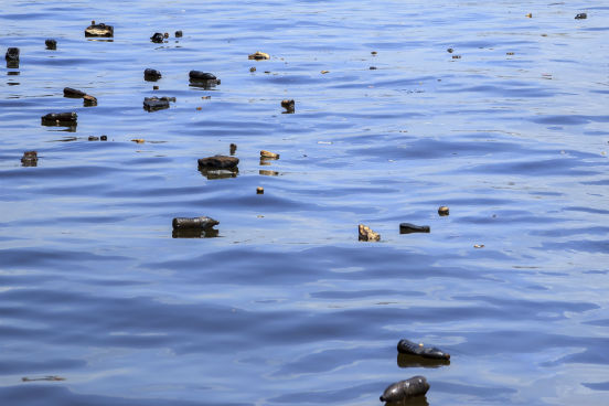 Segundo Asenjo, estas são apenas as primeiras indicações da gravidade da situação em toda a Europa. Ele explica que os resíduos plásticos são considerados os principais predadores do oceano porque levam centenas de ano para desaparecer, diferentemente de outros materiais como madeira ou cartão, por exemplo. Além disso, ele ressalta que os plásticos podem ser ingeridos pelos animais marinhos, o que pode fazer com que eles sufoquem e até morram. (Imagem: iStock)