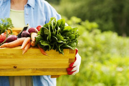 Sais minerais são substâncias inorgânicas que se apresentam na forma de íons - ou seja, são os elementos químicos em seu estado livre. Eles são essenciais para o bom funcionamento do nosso metabolismo em geral, mas não são produzidos pelo corpo humano. Por isso, os sais minerais devem ser ingeridos através da água, do leite e de alimentos como frutas, legumes e verduras. (Imagem: Thinkstock)