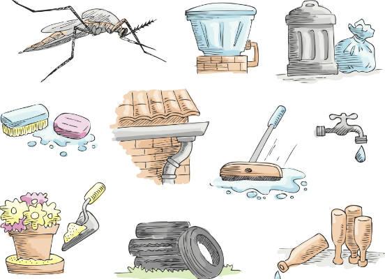 Ainda não existe vacina contra o zika vírus. Até agora, a melhor forma de prevenção é eliminar os focos do mosquito Aedes, que se reproduz em recipientes com água parada acumulada. Também podem ser utilizados repelentes e telas de proteção para evitar o contato com o mosquito. (Imagem: Thinkstock)