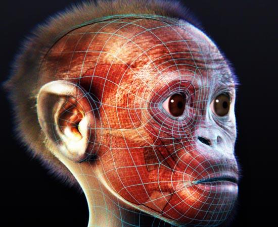 HISTÓRIA DA VIDA - Estude sobre o povoamento da Terra, os primeiros organismos, as cianobactérias, os primeiros seres unicelulares e os primeiros seres multicelulares.