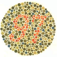 """Quem tem visão normal vê o número 97. A maioria dos daltônicos não vê nada ou uma imagem equivocada. <a href=""""http://guiadoestudante.abril.com.br/vestibular/noticias/descobrir-daltonismo-pode-melhorar-vida-escolar-545415.shtml"""" target=""""_blank"""">Leia mais sobre daltonismo</a>."""