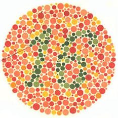 """Quem tem visão normal vê o número 16. A maioria dos daltônicos não vê nada ou uma imagem equivocada. <a href=""""http://guiadoestudante.abril.com.br/vestibular/noticias/descobrir-daltonismo-pode-melhorar-vida-escolar-545415.shtml"""" target=""""_blank"""">Leia mais sobre daltonismo</a>."""
