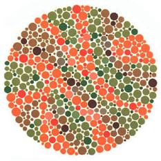 Quem tem a visão normal ou uma fraca deficiência não vê nada. Quem tem dificuldades para reconhecer o verde e o vermelho vê o número 2.