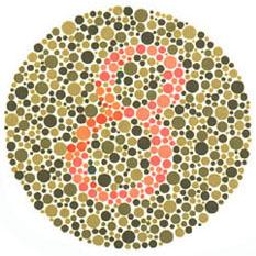 """Quem tem visão normal vê o número 8. Quem tem dificuldades com o verde e o vermelho vê 3. <a href=""""http://guiadoestudante.abril.com.br/vestibular/noticias/descobrir-daltonismo-pode-melhorar-vida-escolar-545415.shtml"""" target=""""_blank"""">Leia mais sobre daltonismo</a>."""