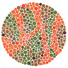 """Quem tem a visão normal ou uma fraca deficiência não vê nada. Quem tem dificuldades para reconhecer o verde e o vermelho vê o número 45. <a href=""""http://guiadoestudante.abril.com.br/vestibular/noticias/descobrir-daltonismo-pode-melhorar-vida-escolar-545415.shtml"""" target=""""_blank"""">Leia mais sobre daltonismo</a>."""