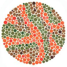 """Quem tem a visão normal ou uma fraca deficiência não vê nada. Quem tem dificuldades para reconhecer o verde e o vermelho vê o número 73. <a href=""""http://guiadoestudante.abril.com.br/vestibular/noticias/descobrir-daltonismo-pode-melhorar-vida-escolar-545415.shtml"""" target=""""_blank"""">Leia mais sobre daltonismo</a>."""