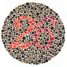 """Quem tem a visão normal vê o número 26. <a href=""""http://guiadoestudante.abril.com.br/vestibular/noticias/descobrir-daltonismo-pode-melhorar-vida-escolar-545415.shtml"""" target=""""_blank"""">Leia mais sobre daltonismo</a>."""