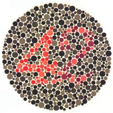 """Quem tem a visão normal vê o número 42. <a href=""""http://guiadoestudante.abril.com.br/vestibular/noticias/descobrir-daltonismo-pode-melhorar-vida-escolar-545415.shtml"""" target=""""_blank"""">Leia mais sobre daltonismo</a>."""