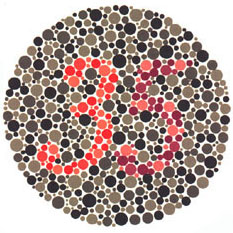 """Quem tem a visão normal vê o número 35. <a href=""""http://guiadoestudante.abril.com.br/vestibular/noticias/descobrir-daltonismo-pode-melhorar-vida-escolar-545415.shtml"""" target=""""_blank"""">Leia mais sobre daltonismo</a>."""