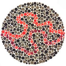 """Quem tem a visão normal vê treços púrpura e vermelhos. <a href=""""http://guiadoestudante.abril.com.br/vestibular/noticias/descobrir-daltonismo-pode-melhorar-vida-escolar-545415.shtml"""" target=""""_blank"""">Leia mais sobre daltonismo</a>."""