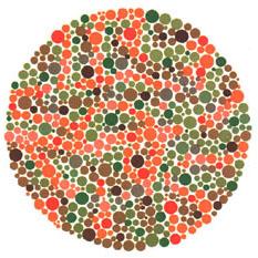 """Quem tem a visão normal ou uma fraca deficiência não vê nada. Quem tem dificuldades para reconhecer o verde e o vermelho vê um traço. <a href=""""http://guiadoestudante.abril.com.br/vestibular/noticias/descobrir-daltonismo-pode-melhorar-vida-escolar-545415.shtml"""" target=""""_blank"""">Leia mais sobre daltonismo</a>."""