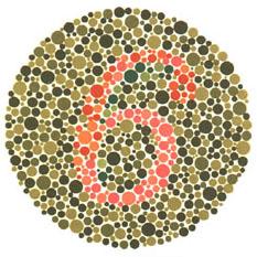 """Quem tem visão normal vê o número 6. Quem tem dificuldades com o verde e o vermelho vê 5. <a href=""""http://guiadoestudante.abril.com.br/vestibular/noticias/descobrir-daltonismo-pode-melhorar-vida-escolar-545415.shtml"""" target=""""_blank"""">Leia mais sobre daltonismo</a>."""