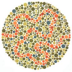 """Quem tem a visão normal vê um traço laranja. <a href=""""http://guiadoestudante.abril.com.br/vestibular/noticias/descobrir-daltonismo-pode-melhorar-vida-escolar-545415.shtml"""" target=""""_blank"""">Leia mais sobre daltonismo</a>."""