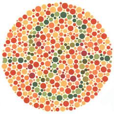 """Quem tem a visão normal vê um traço verde-azulado e verde-amarelado. <a href=""""http://guiadoestudante.abril.com.br/vestibular/noticias/descobrir-daltonismo-pode-melhorar-vida-escolar-545415.shtml"""" target=""""_blank"""">Leia mais sobre daltonismo</a>."""