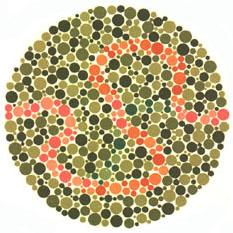 """Quem tem a visão normal vê traços púrpura e laranja. <a href=""""http://guiadoestudante.abril.com.br/vestibular/noticias/descobrir-daltonismo-pode-melhorar-vida-escolar-545415.shtml"""" target=""""_blank"""">Leia mais sobre daltonismo</a>."""