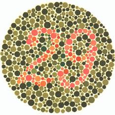 """Quem tem visão normal vê o número 29. Quem tem dificuldades com o verde e o vermelho vê 70. <a href=""""http://guiadoestudante.abril.com.br/vestibular/noticias/descobrir-daltonismo-pode-melhorar-vida-escolar-545415.shtml"""" target=""""_blank"""">Leia mais sobre daltonismo</a>."""