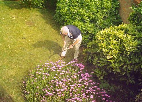Gosta de cuidar do jardim de casa? Se você se dedicar bastante e fizer cursos profissionalizantes, pode trabalhar cuidando dos jardins de outros. (Foto: Wikimedia Commons)