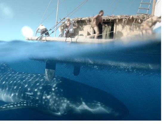 Baseado em fatos reais, conta a história do norueguês Thor Heyerdahl, que desenvolveu uma teoria de que os nativos da Polinésia vieram da América e não da Ásia. Como suas ideias não são aceitas pela comunidade científica, ele resolve provar que a viagem pelo oceano seria possível. Para isso, Heyerdahl constrói uma jangada, o Kon-Tiki, e embarca com cinco companheiros do Peru à Polinésia. Concorre ao Oscar de Melhor Filme estrangeiro. Clique em -Leia mais- e conheça a história dos polinésios, povo que já navegavam pelo oceano Pacífico havia 9 séculos quando Jesus pregava na Galileia. ESTUDE: PRÉ-HISTÓRIA (POVOAÇÃO DOS CONTINENTES). (imagem: reprodução)