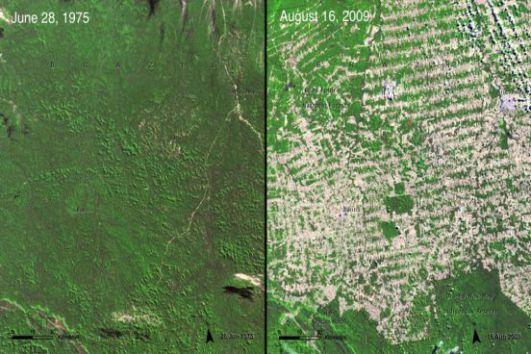 O Brasil encabeça a lista com o desmatamento provocado pela atividade agropecuária. Em 2008, 38% da Amazônia desapareceu. No lugar das árvores, surgiram fazendas.(Imagem: NASA)