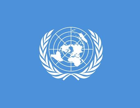 Para representar as áreas polares, o método mais comum é a projeção azimutal, também chamada de projeção plana. O emblema da Organização das Nações Unidas é uma projeção azimutal do globo terrestre, por exemplo. (Foto: Wikimedia Commons)