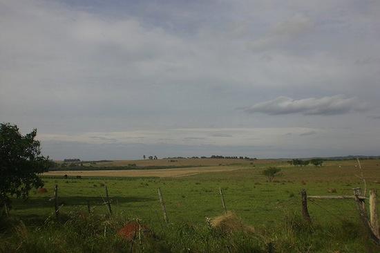 PAMPA - No Brasil, está presente somente em 63% do território do Rio Grande do Sul, mas se estende pela Argentina e Uruguai. O bioma Pampa é marcado por clima chuvoso, temperaturas negativas no inverno e vegetação constituída de ervas e arbustos.