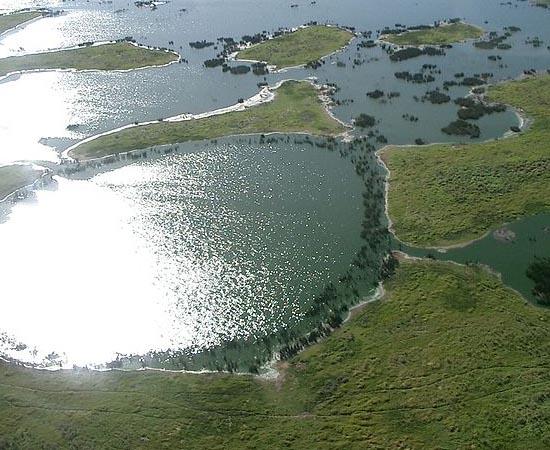 PANTANAL - Estude sobre a maior área alagada de água doce do mundo.