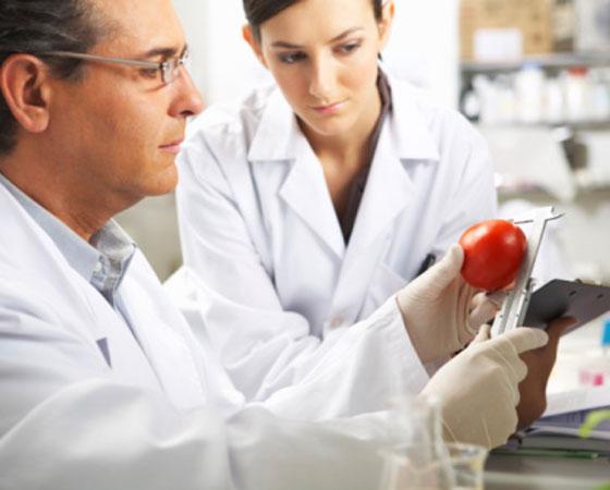 Ciência e Tecnologia de Alimentos: uma das áreas em que esse profissional pode trabalhar é na de criação de novos sabores e testes com o paladar humano. Para isso, pode ganhar 53 mil dólares.