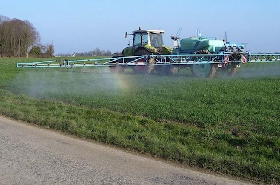 A Química no cotidiano: agricultura, alimentos e meio ambiente.