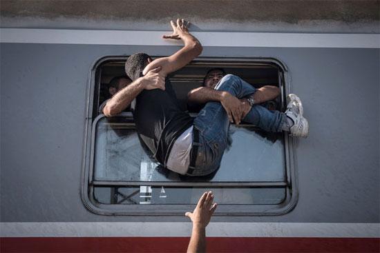 Refugiados tentam embarcar em um trem em Tovarnki, na Hungria, com destino a Zagreb, na Croácia (Crédito foto: Sergey Ponomarev/The New York Times).