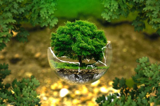 [Orientação] Quem faz ciências biológicas pode trabalhar com gestão ambiental_