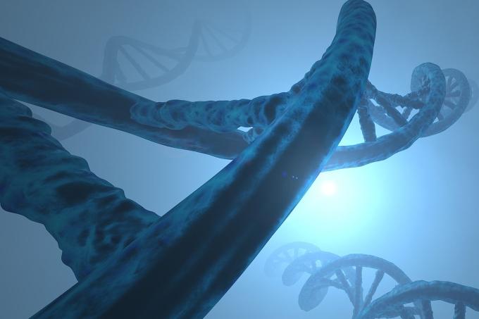 Simulado de Biologia – Genética