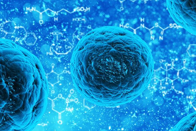 Fisiologia Celular – Mecanismos de Transporte Celular